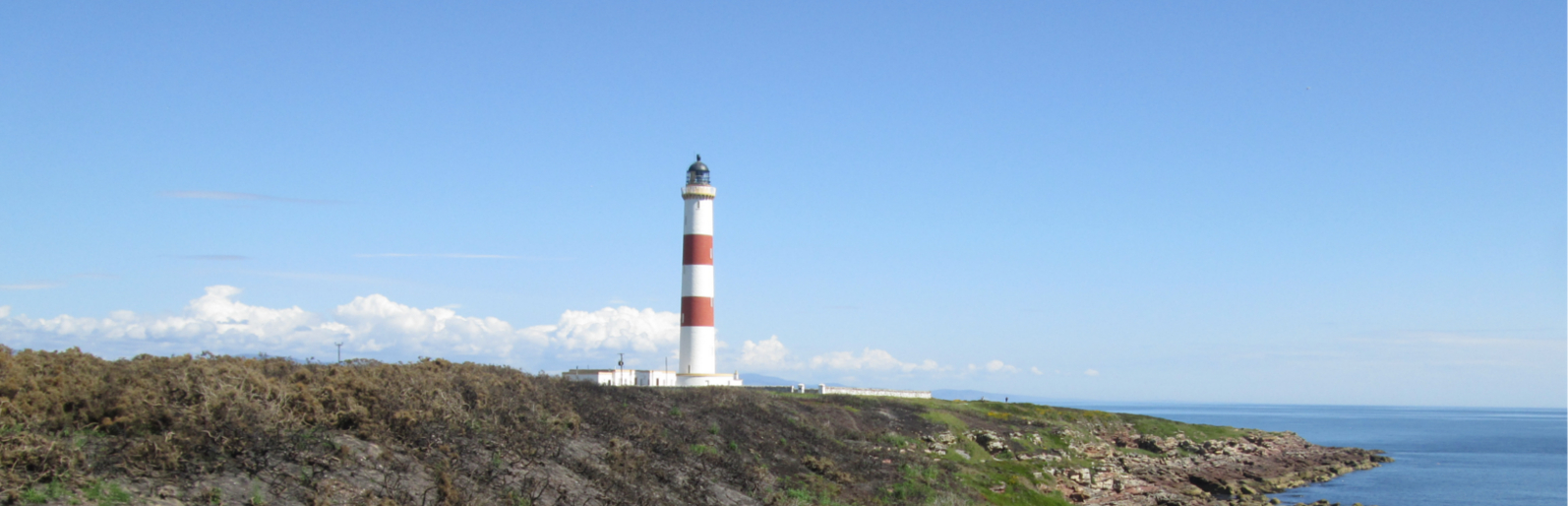 Looking after your business, like a lighthouse protects a boat.